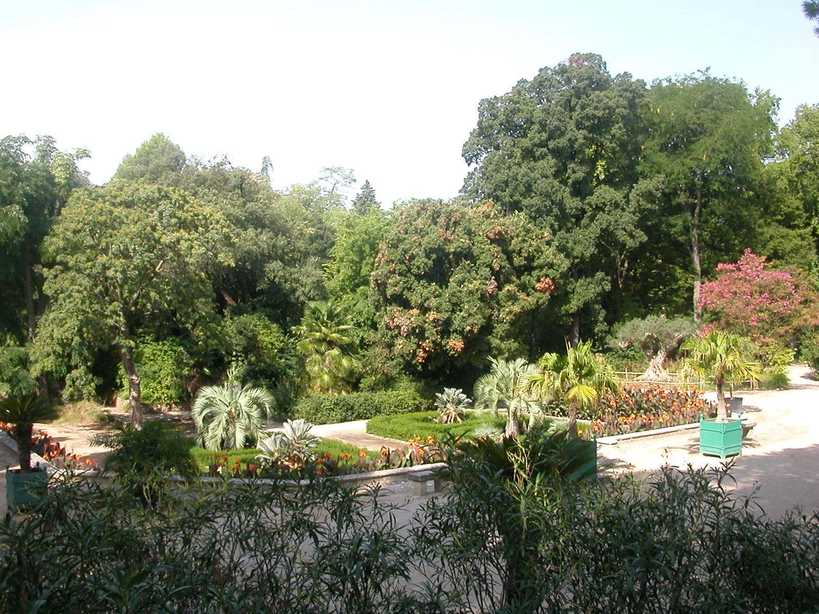 Keywords jardin des plantes and Tags